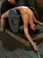 Nipple torture, brutal crotch...