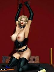 BDSM 3D Toon