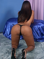 Sophisticated bronze tgirl showing off on camera