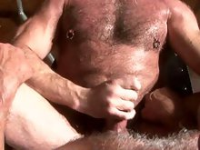 Muscle older gay bears in a wild group sex orgy