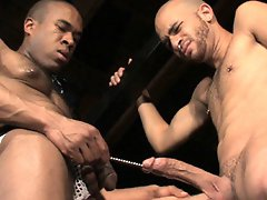 Interracial action, massive dicks and a penchant for pegs: this hardcore video has it all. Watch this extreme duo go at it with some of the most painf