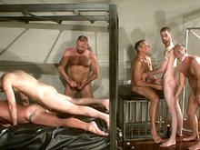 Hot older bears group ogry movies