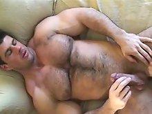 Hairy muscle bear Zeb Atlas