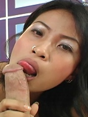 Thai spinner Paen knows how to give a blowjob!