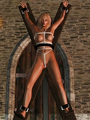 3D BDSM Cartoons