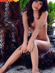 Pretty Nana Lee Wild Stripping